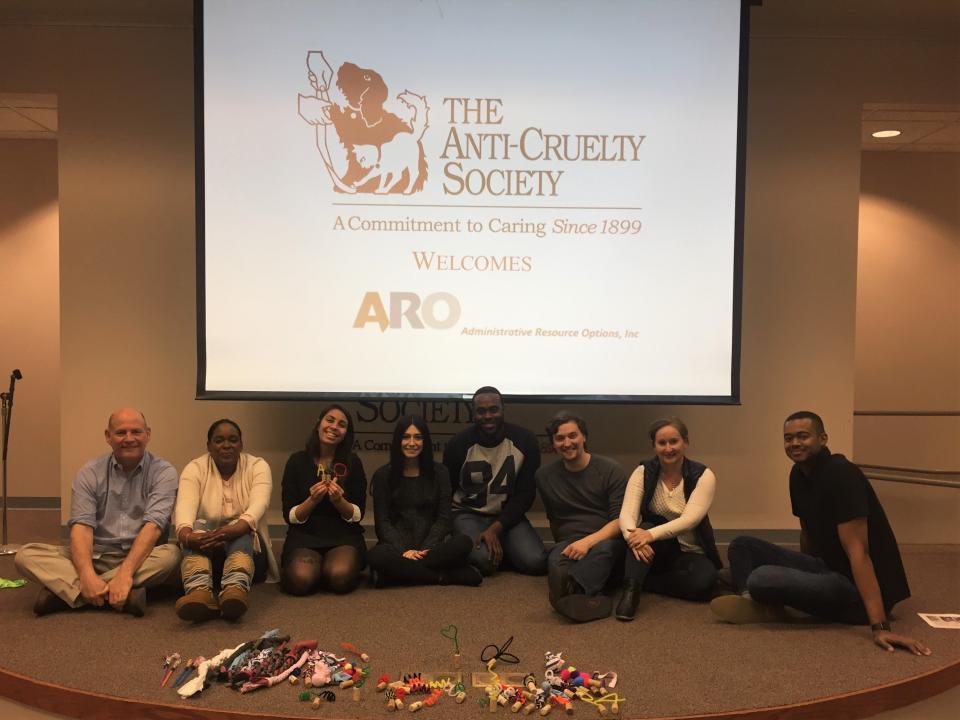 Team Event at Anti Cruelty