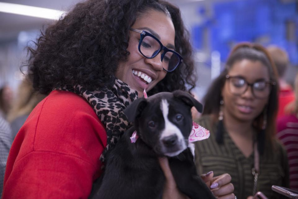 Ruff day at work? No problem! Our employees got a chance to enjoy some puppy love while at our monthly employee engagement event.