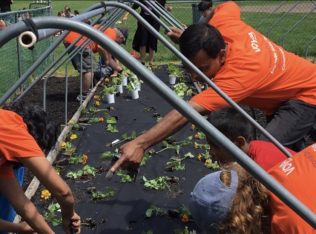 Voya employees in Braintree, MA, help with landscaping and planting at a local school.