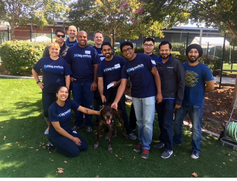 Team BSN volunteer day: Humane Society Silicon Valley