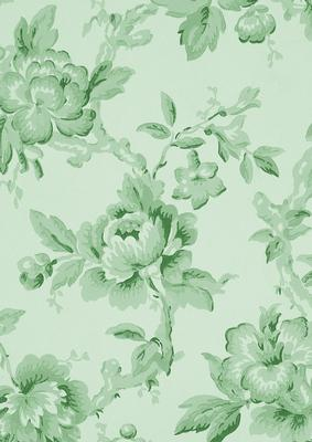 Mint Green Plain Rose Wallpaper A4 Backing Paper