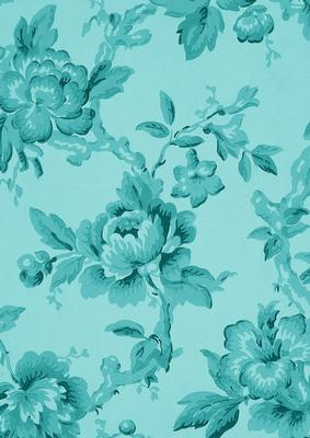 Teal Plain Rose Wallpaper A4 Backing Paper Cup274039 10