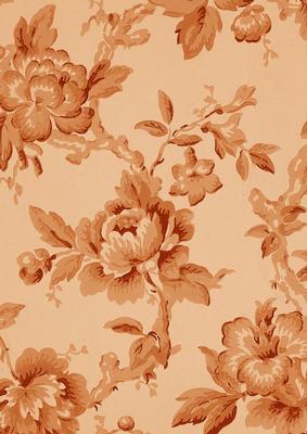 Burnt Orange Plain Rose Wallpaper A4 Backing Paper