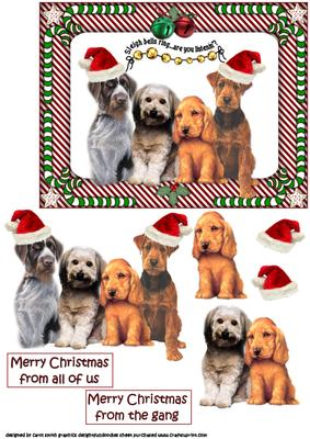Merry Christmas Puppies.Christmas Puppies