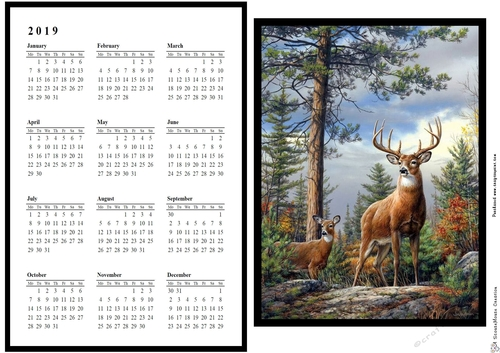 2019 Calendar Majestic Stag And Doe Cup907467 4063 Craftsuprint