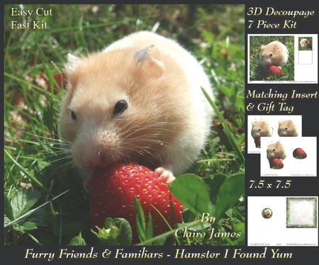 Furry Friends & Familiars - Hamster I Found Yum + Tag +