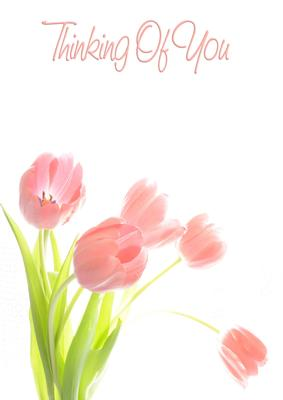 Tulip Personalised Thinking of You Greeting Card
