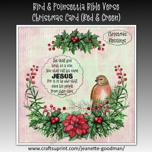 Bible Verses For Christmas.Bird And Poinsettia Bible Verse Christmas Card Kit Red And Green