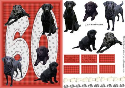 Black Labrador 60th Birthday Card