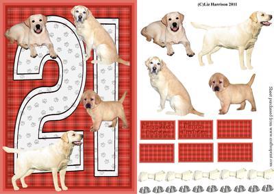 Golden Labrador 21st Birthday Card