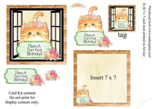 Cute Ginger Cat Birthday Card 7 X Mini Kit With Decoupage Elements Insert And Tag