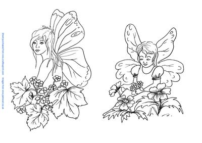 Butterfly Fairy And Flower Fairy Digi Stamps Cup96482