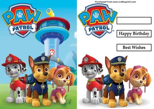 Paw Patrol Marshall Chase Skye Birthday A5 Decoupage