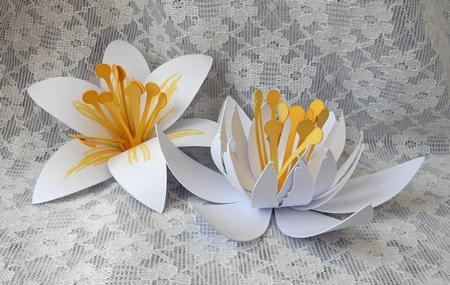 3d Stargazer Lily Flowers Cup692543 596 Craftsuprint