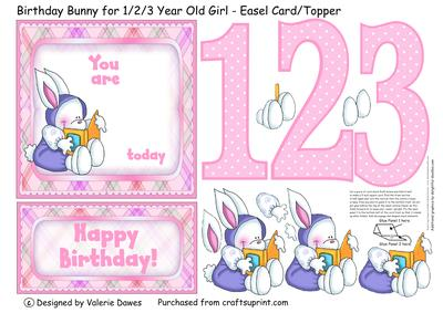 Birthday Bunny For 1 2 3 Year Old Girl