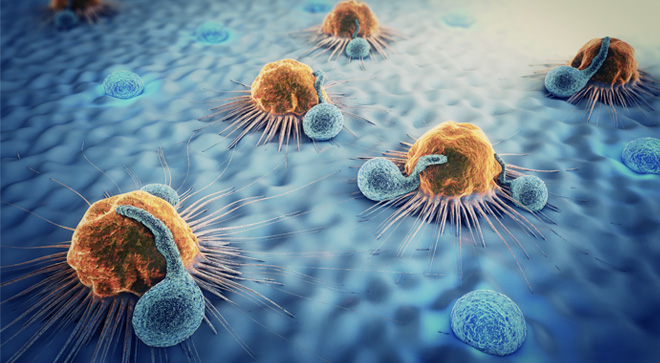 MCL mantle cell lymphoma CAR-T therapy