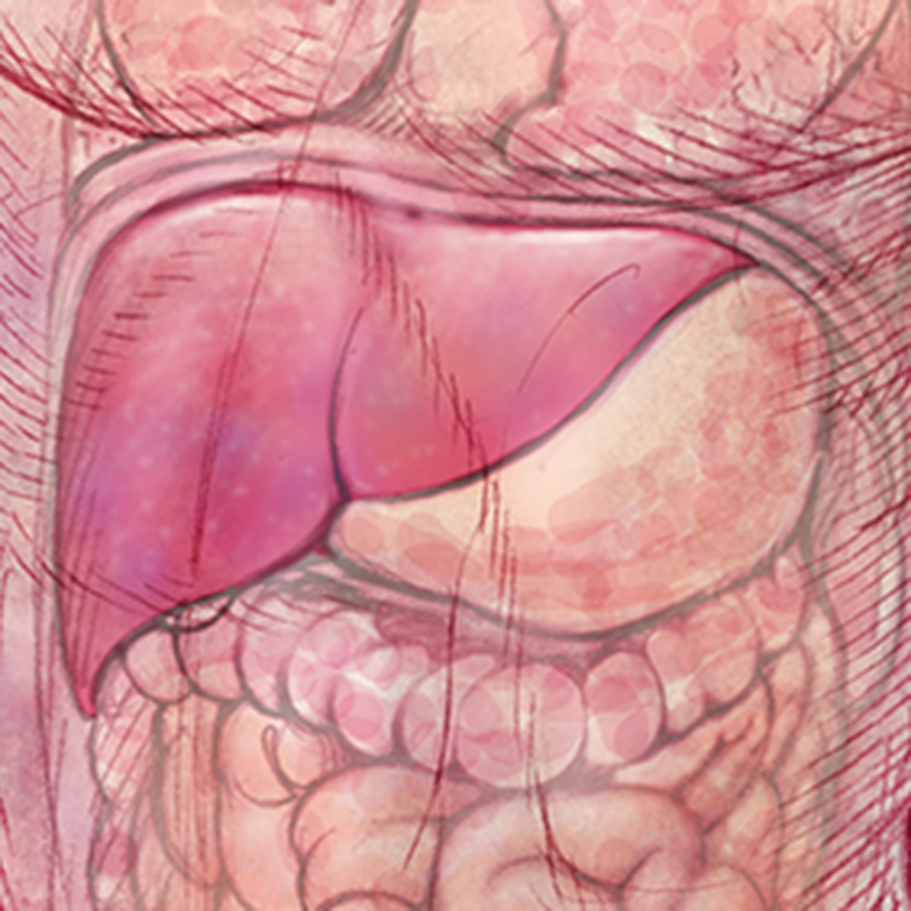 Promising Liver Cancer Treatments on the Horizon
