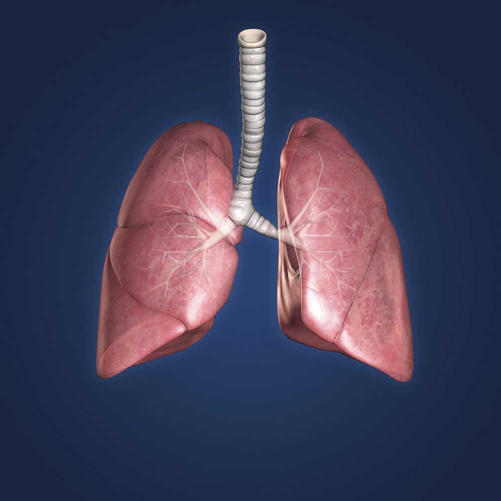 Treatment Guidelines Updated for Advanced Lung Cancer