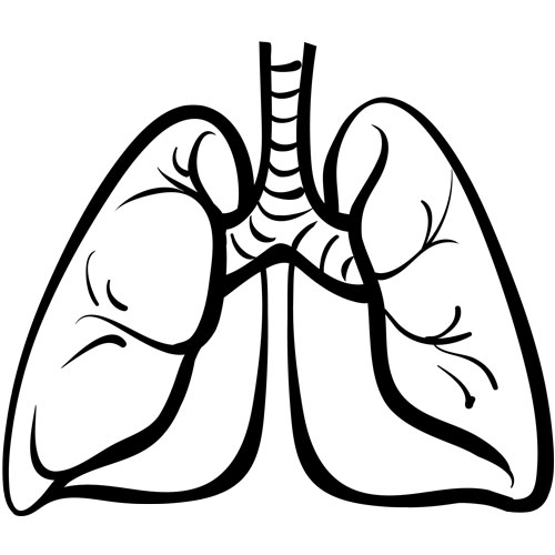 lungs sketch actionable mutations common in lung cancer patients under 40 4666
