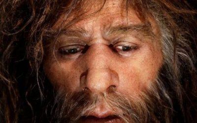 Hallan en Gibraltar la segunda huella de neandertal en el mundo