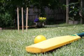 Cricket - Splash Events, Noosa & Sunshine Coast