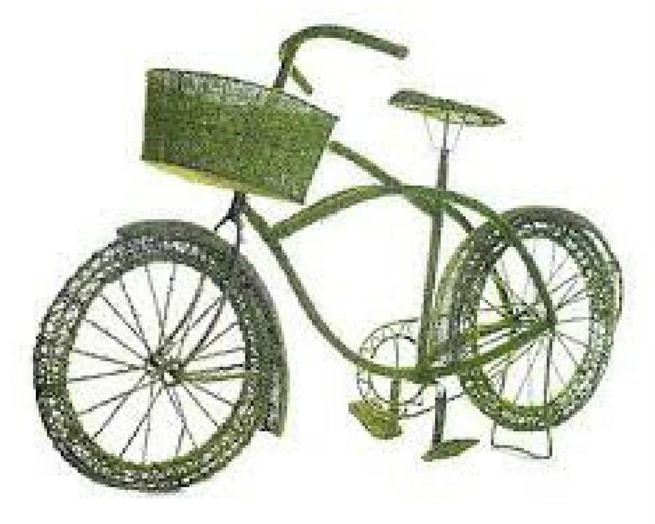 Moss bike with basket - Splash Events, Noosa & Sunshine Coast