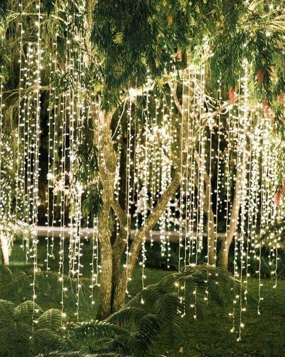 Tree fairy lights - Splash Events, Noosa & Sunshine Coast