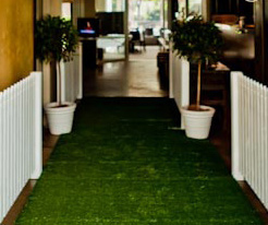 Artificial grass - Splash Events, Noosa & Sunshine Coast