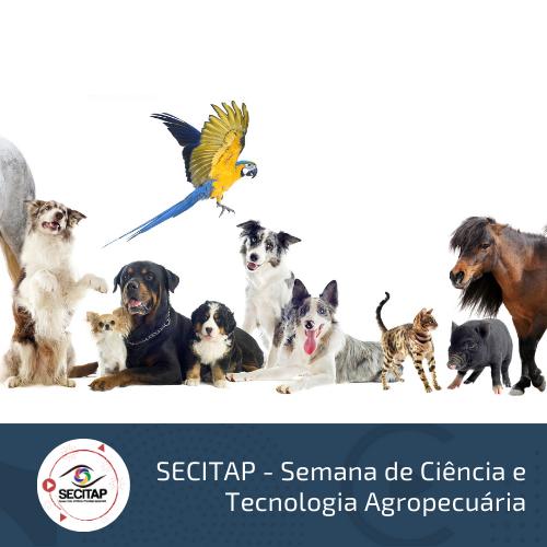 S1 - Relação entre Comportamento e Saúde Animal