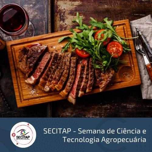 S3 - Cadeia Produtiva da Carne e os Novos Mercados