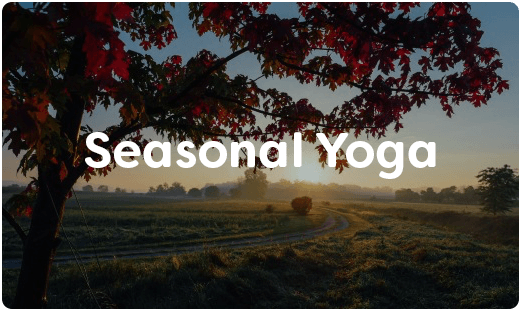 Seasonal Yoga