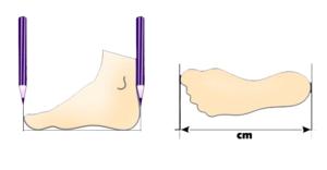 how-to-measure-feet