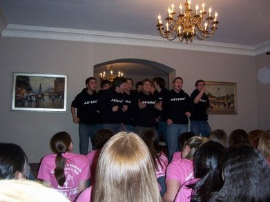 Northwestern's Asterik Rocks Delta Zeta! T-Shirt Photo