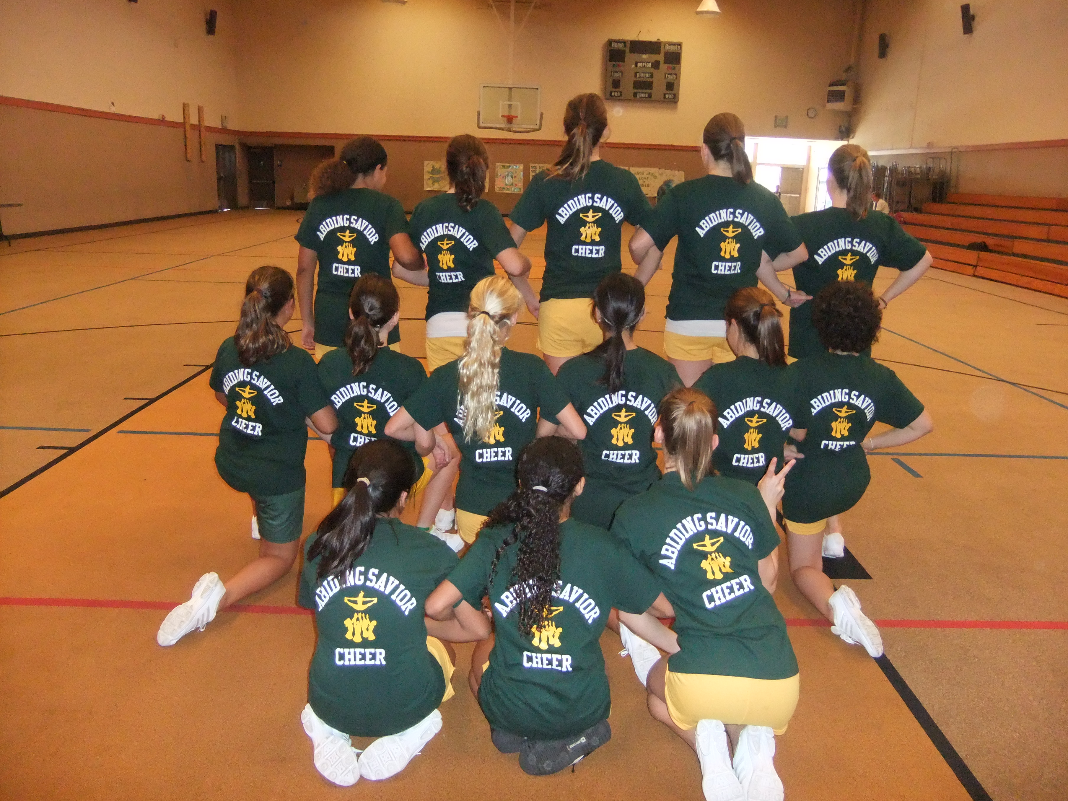 Cheer Pride T Shirt Photo
