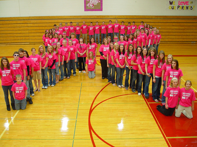 Turtle Lake High School Digs Pink T-Shirt Photo