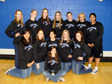 Fountain Hills Falcons Basketball T-Shirt Photo