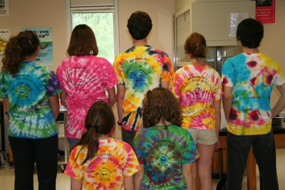 Formula For An Idea Class: Ap Chem 2011 T-Shirt Photo