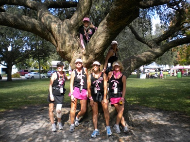 Tampa Bay 3 Day Breast Cancer Walk T-Shirt Photo