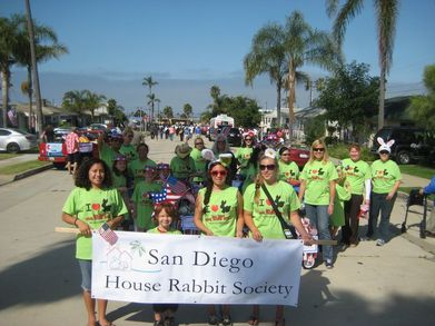 Marching In The Oceanside Freedom Days Parade T-Shirt Photo