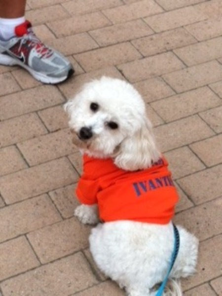Thanks For Participating In Vision Walk 2012, Lucky! T-Shirt Photo