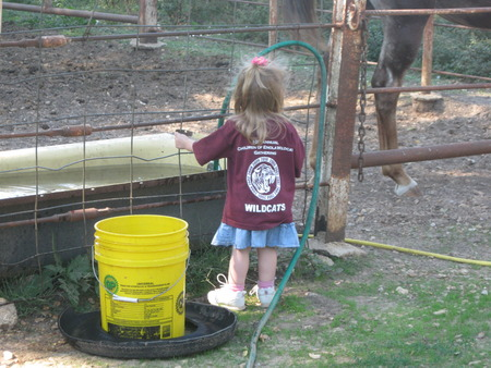 Enjoying Her T Shirt And The Ranch During Our Reunion. T-Shirt Photo