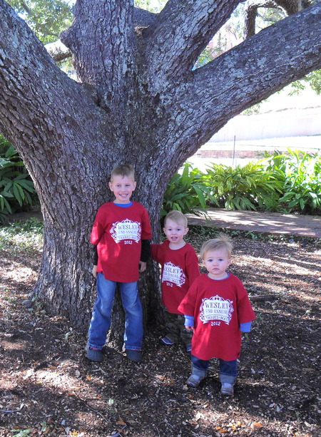 My 3 Grandsons T-Shirt Photo