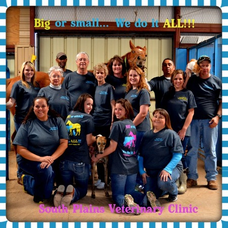 Big Or Small...We Do It All!!! T-Shirt Photo
