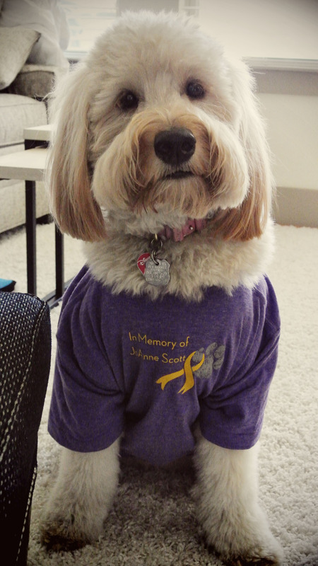 Jo Anne's Joy Mascot T-Shirt Photo