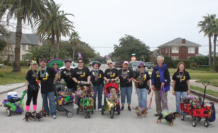 Barkus And Meoux Parade, Galveston 2013 T-Shirt Photo