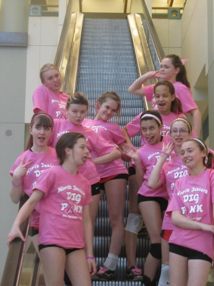 Dig Pink Volleyball Msp Convention Center T-Shirt Photo