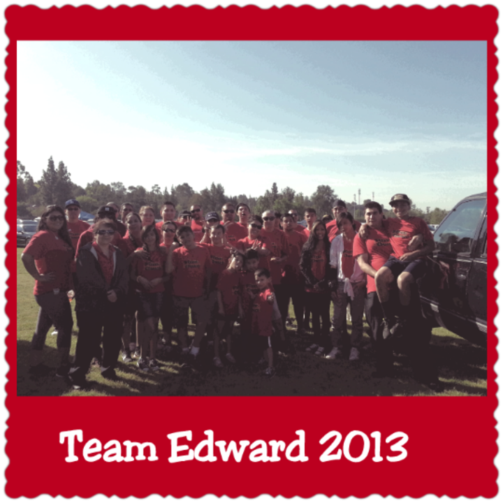 Team Edward 2013 T-Shirt Photo