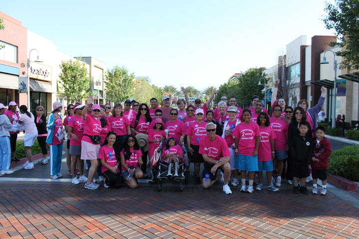 Making Strides Cancer Walk T-Shirt Photo