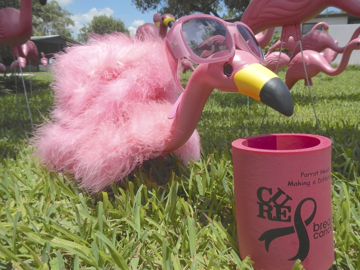 Flamingos Flock For A Cure T-Shirt Photo