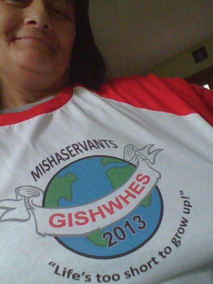 Gishwhes 2013 T-Shirt Photo